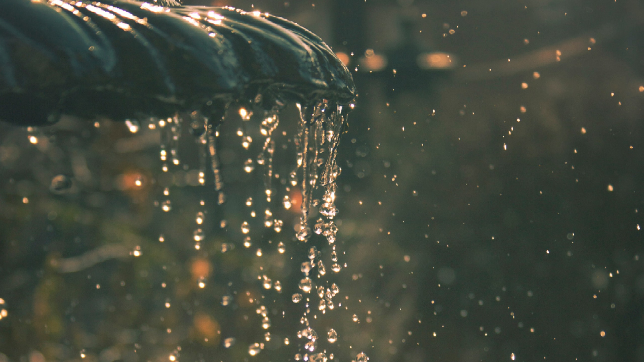 dettaglio-fontana